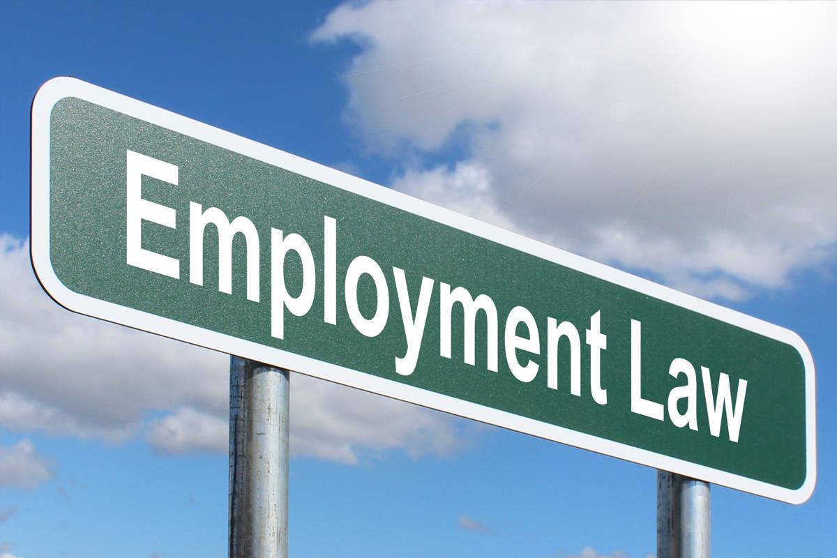 labour and employment law in viet nam